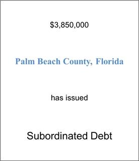 Palm Beach Health Care System Has Issued Subordinated Debt